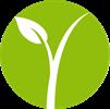 Relva Viva | Gestão Florestal e Jardins