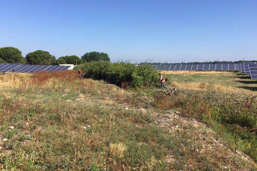 Parc photovoltaïque Coruche
