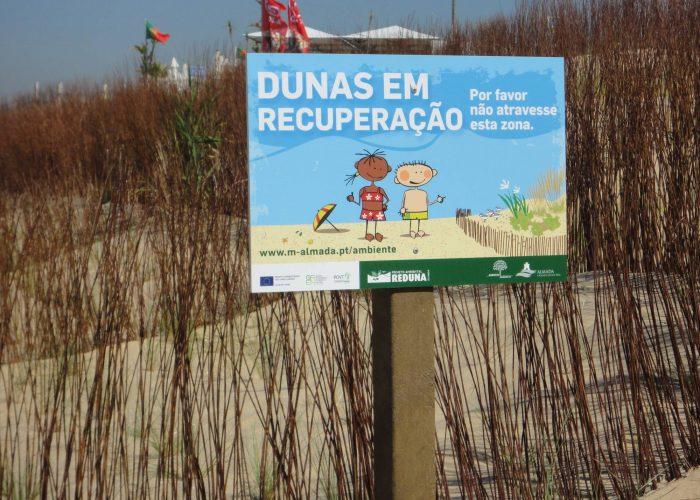 Recuperacao-de-Dunas-Praia-S-Joao (1)