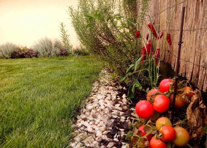 manutencao-de-jardins (13)