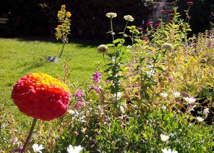 manutencao-de-jardins (14)