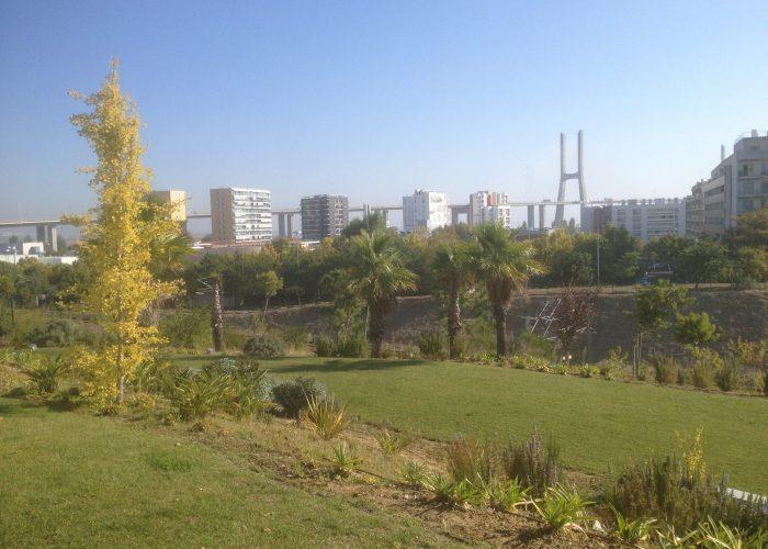 manutencao-de-jardins (18)