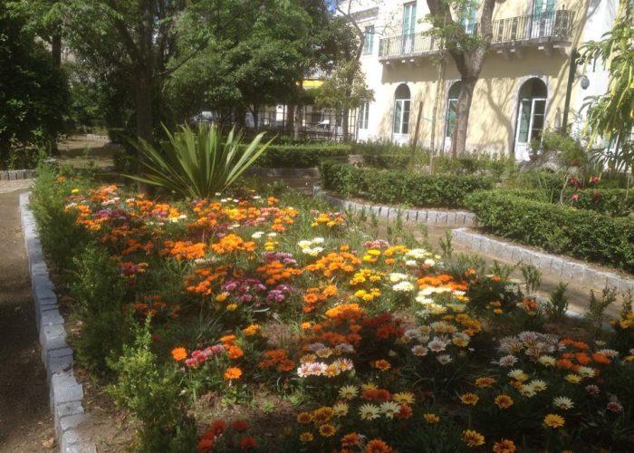 manutencao-de-jardins (2)
