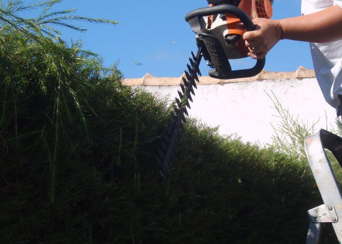 manutencao-de-jardins (24)