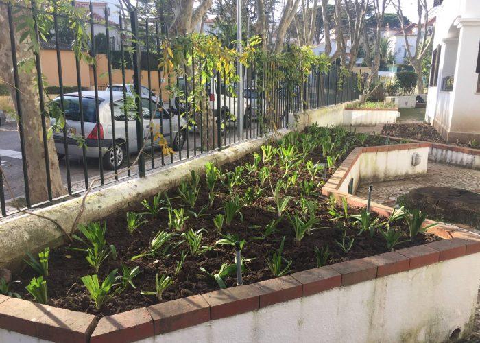 manutencao-de-jardins (31)
