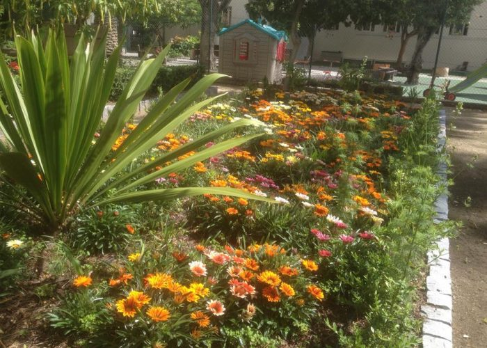 manutencao-de-jardins (38)